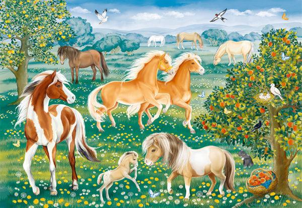 Mustang Meadow