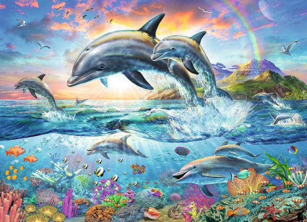 Vibrant Dolphins