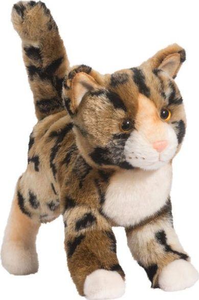 Tashette Bengal Cat