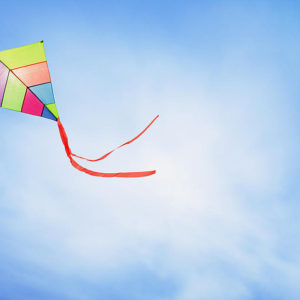 Kites Spinners and Windsocks